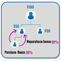 Advance MLM Binary Plan Script purchase bonus repurchase bonus